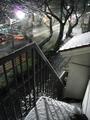 降雪(2010.02.01 20:00)