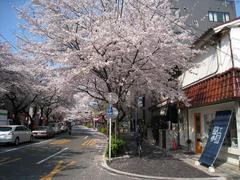 【工房弐参-あとりえふみ-】2009.04.07