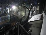 降雪(2010.02.18 05:30)N