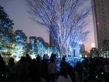 新宿サザンテラス・イルミネーション2008/09-3