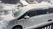 雪(20140305)セレナ