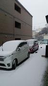 降雪中(20150130)自宅