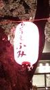 中野さくら祭2014(協賛提灯)