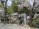 穂見諏訪十五所神社