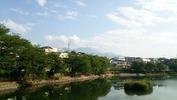 牛池桜(20140529)八ヶ岳