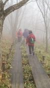 霧ヶ峰ツアー(20140515)八島ヶ原湿原復路