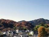 高尾(2011.12.04)