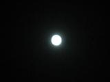 お月見(070925-3)