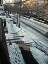 中野通り「雪」(2013.1.15)南