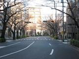 初日の出(2010.01.01)中野通り北