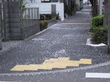 桜2011(中野通り:歩道)4.9