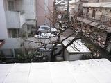 積雪?(2011.02.12)車庫屋根