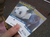 上野動物園(入場券)
