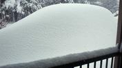 雪(20140215_0900)