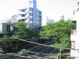 桜並木2007[04.28-2]