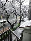 降雪中(2012.2.29)1