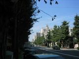 132_3236.JPG-ichou