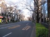 元旦(2009.01.01-中野通り北)