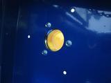 サンドブラストBOX(青キャビ)排気口接続部品-5