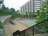 147_4756.JPG-myoshojiko-park