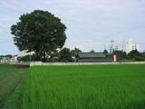 152_5222.JPG-takiyama