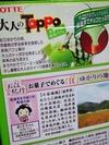 TOPPO「京都宇治抹茶パフェ」裏書