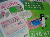 Suica&PASMO[旧3枚]