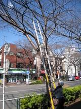 NTT工事(080220)