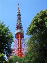 東京タワー[下(東南)付近より]