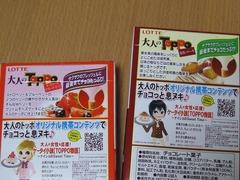 大人のTOPPO(2010秋)裏書き