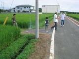 152_5224.JPG-hanabi02