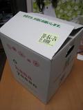 チェブラーシカ(フラワーアレンジメント[BOX])