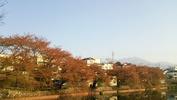 牛池(20140227)八ヶ岳