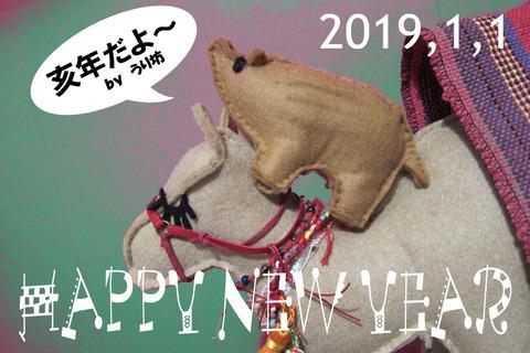 2019newyear