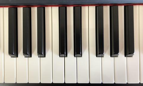鍵盤写真(2つ)