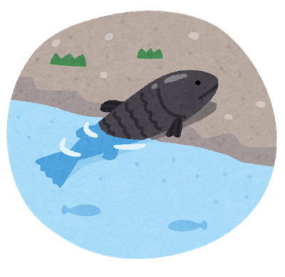 shinka_riku_agaru_fish