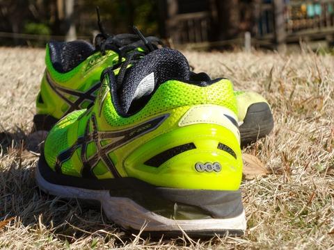 「鉛直スティフネス」という視点から長距離走競技選手がウエイトトレーニングに取り組むべき理由を考える。。。