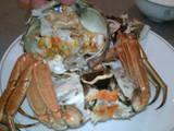 0610 上海蟹