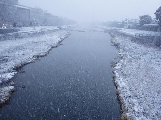 先日の吹雪