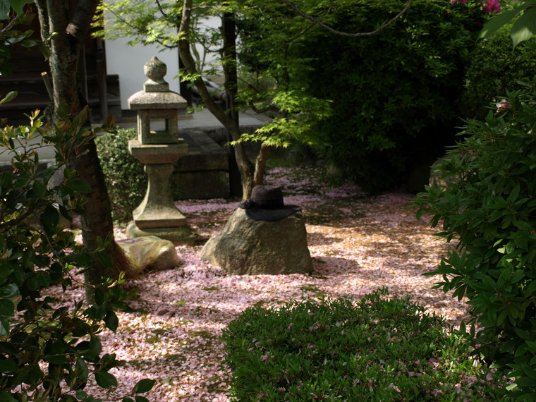 桜の残り香