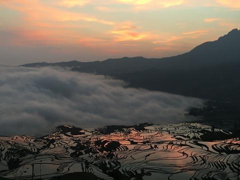 yuanyang-rice-terraces-2374300_1920