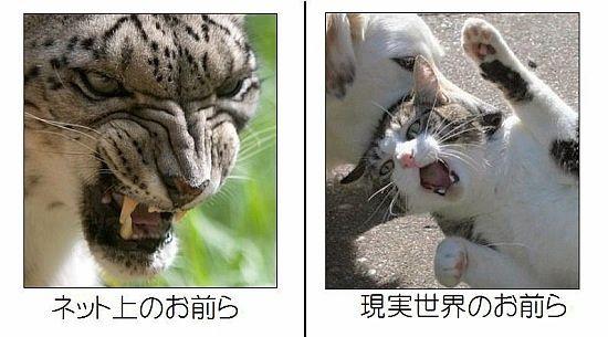 松井珠理奈「総選挙で1位になってリベンジする!SKEのためにも絶対1位になる!」->画像>76枚