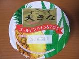 hokunyu-verybig-pine&aloe.jpg