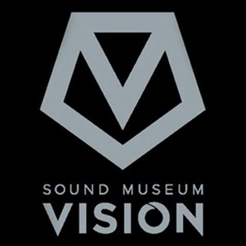 300-300-vision
