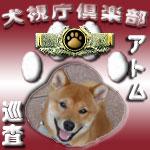 犬視庁巡査