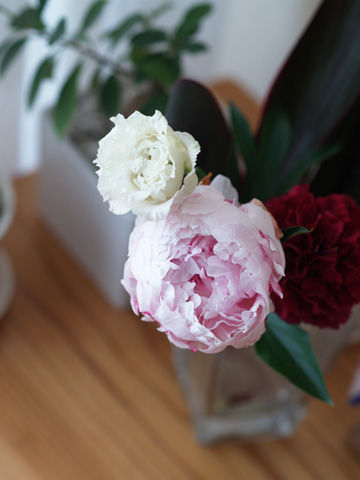 5/30 大好きな花たちに囲まれてvol.18