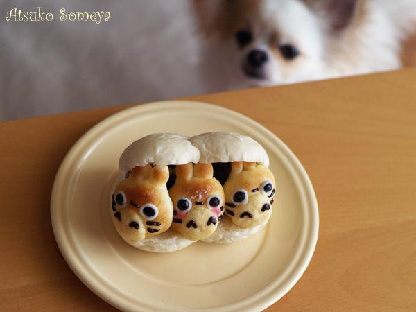 トトロのパンとうちの犬