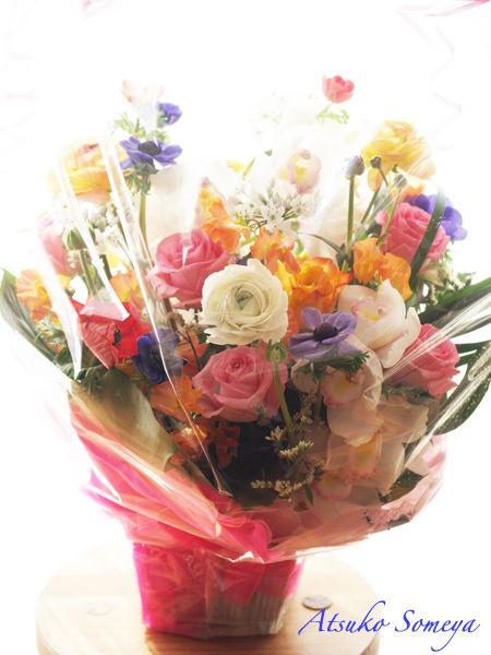 大きなお花とうたこや