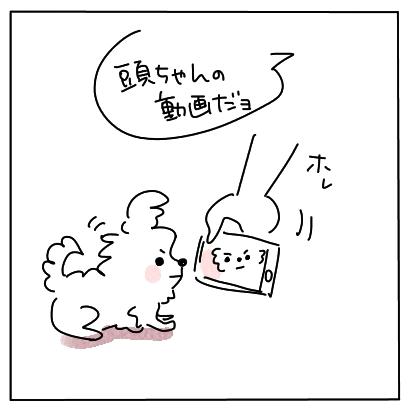 ぱくぱく1