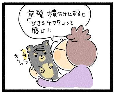 犬髪4444
